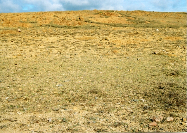 Keen of Hamar