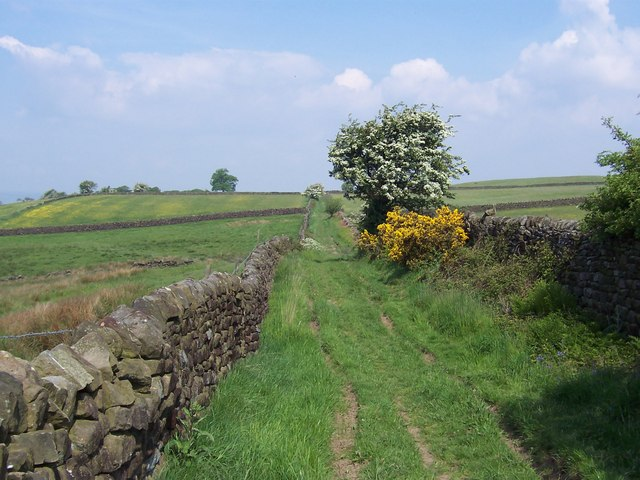Green Lane running from Hartwith to Summerbridge