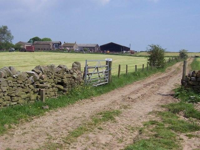 High Pasture Farm