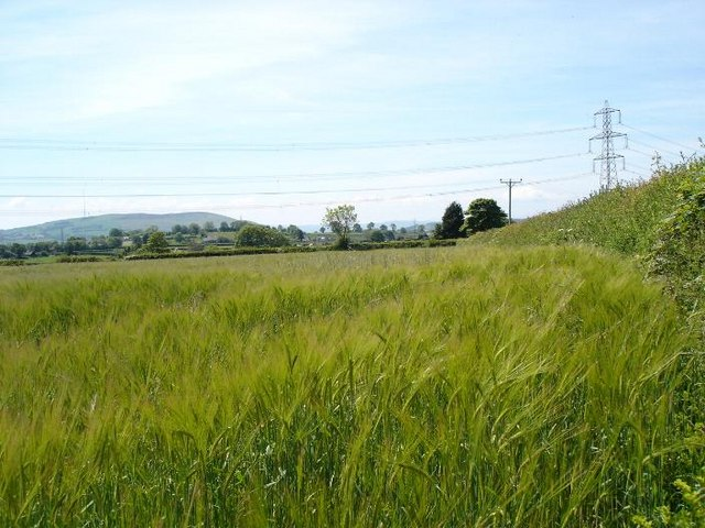 Calcoed farmland