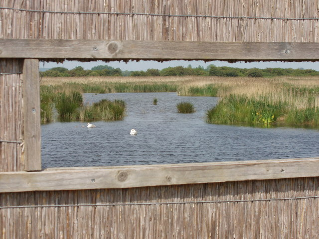 Bird viewing hide and Otmoor reedbed