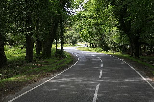 Burley Road in Hincheslea Wood