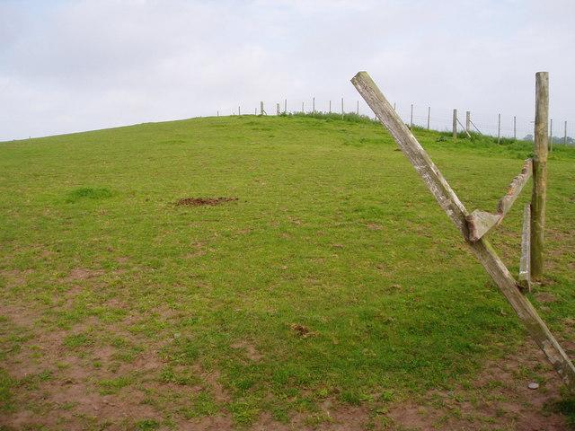 Tumulus near Bryn Rossett Farm