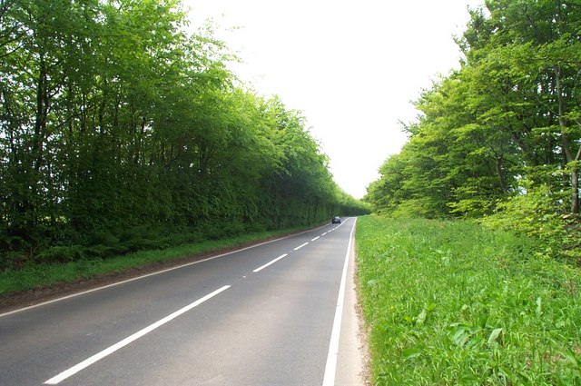 The open road: the B3224 across the Brendon Hills.