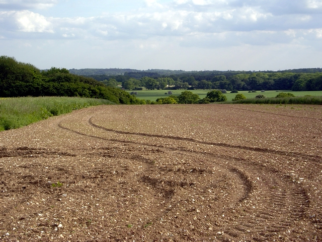 Field at Bossington Farm
