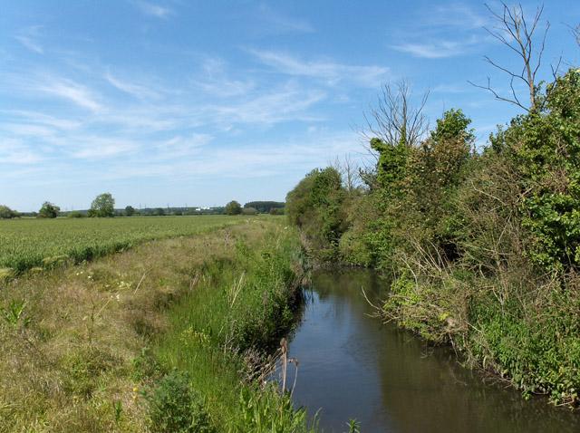 Farmland ditch near Didcot