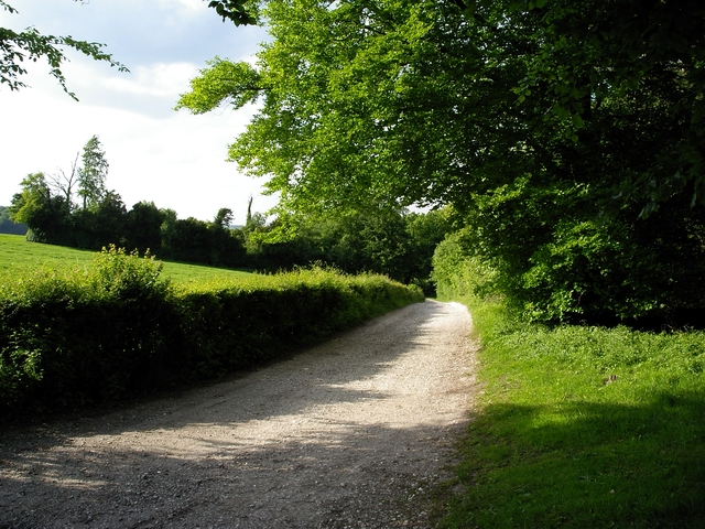 Track west of Forest of Bere Farm