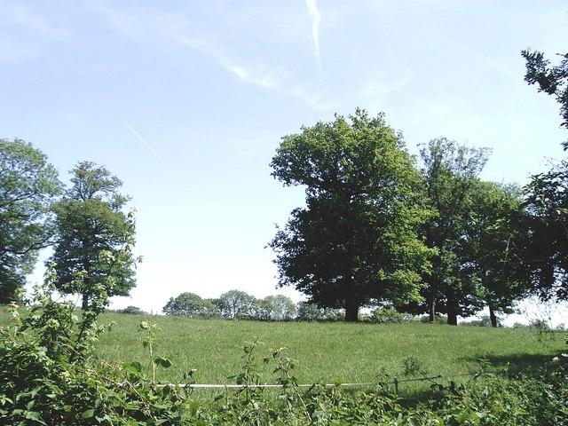 Countryside adjoining Warren Road, Burham