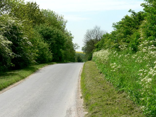 The Road from Beverley to North Newbald