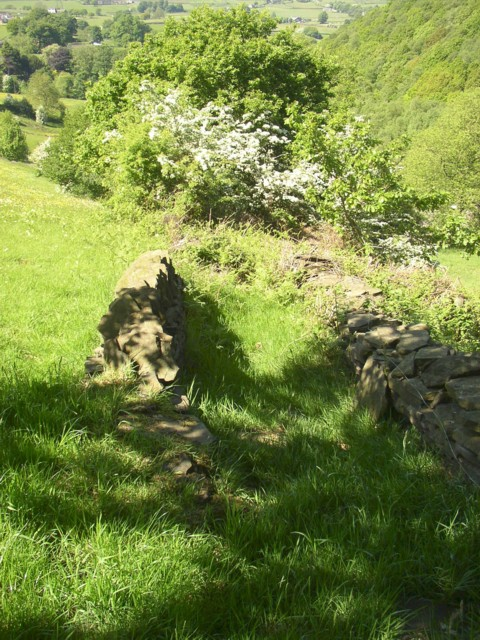 Remains of walled footpath, Barkisland