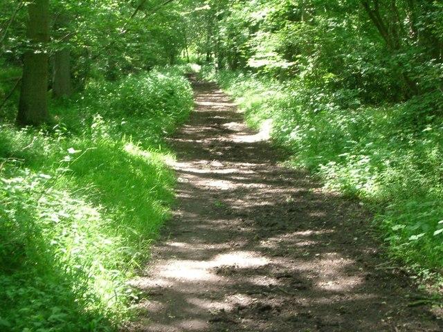 Dunpits Lane