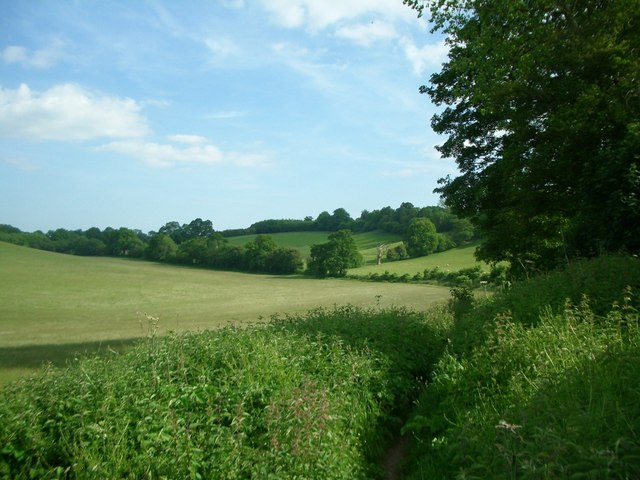 Fields near Bramley