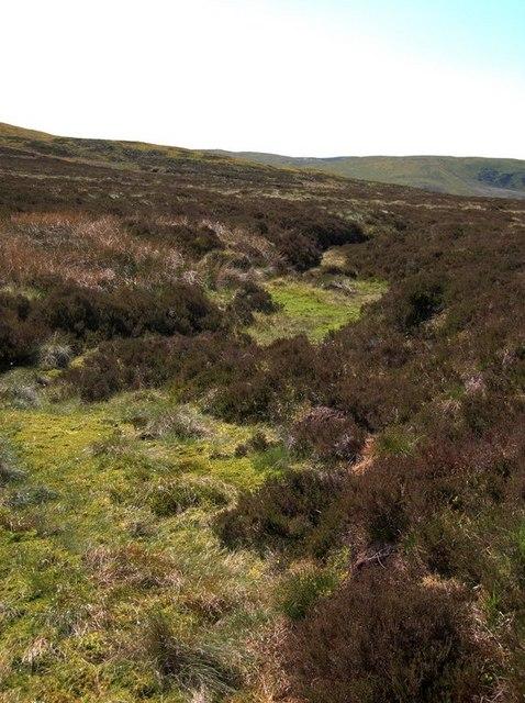 The source of Afon Hengwm