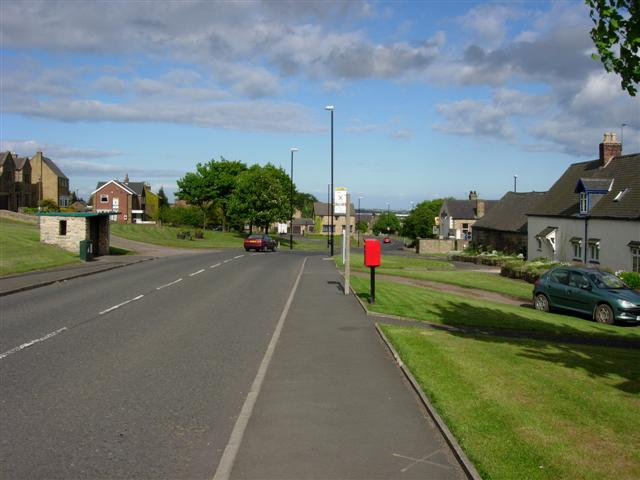 High Usworth village green