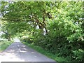 SP9422 : The Rye near Billington by Rob Farrow