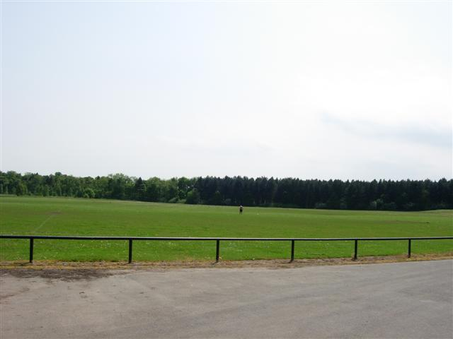 Public playing fields