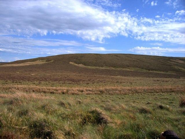 Bog southeast of Bugeilyn