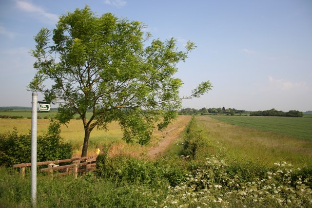 Scredington from Gorse Drove