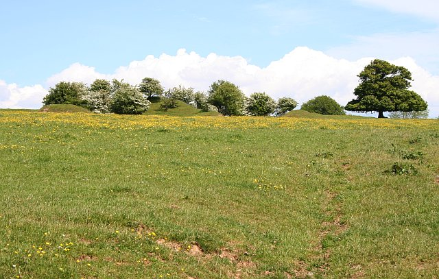 Mounds at Kilworthy