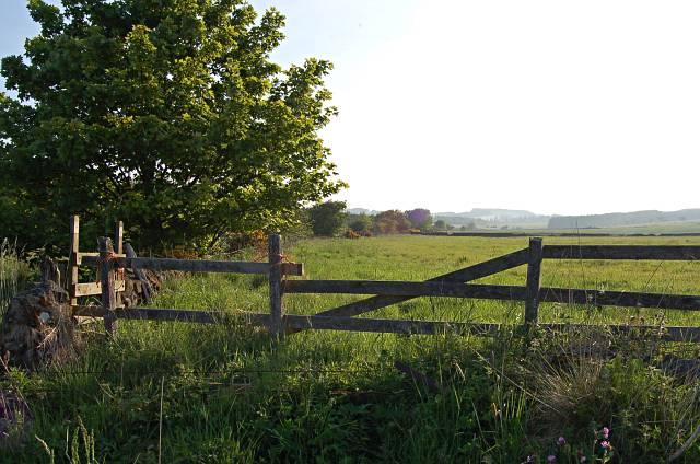Farmland near Larennie