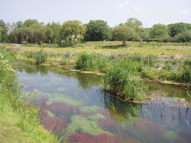 Hayle River near St Erth