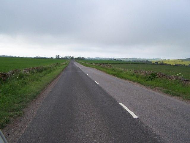 Backroad Between Arbroath and Friockheim