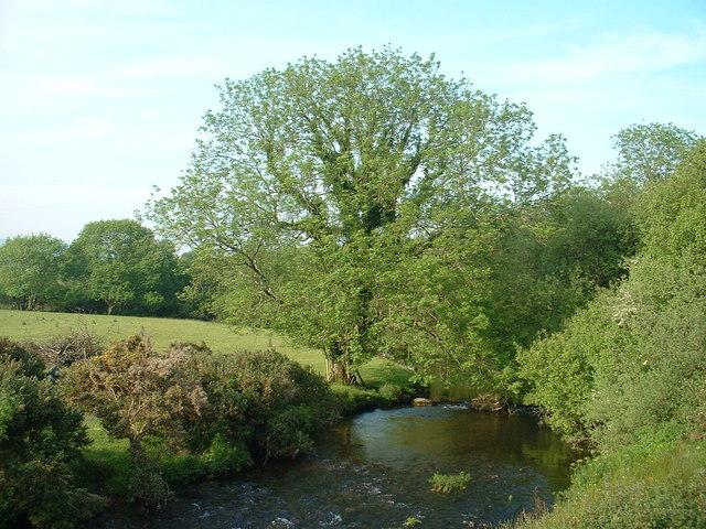 Afon Dwyfach at Pont y Felin