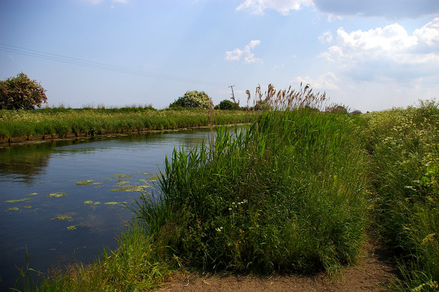 Banks of the Ancholme