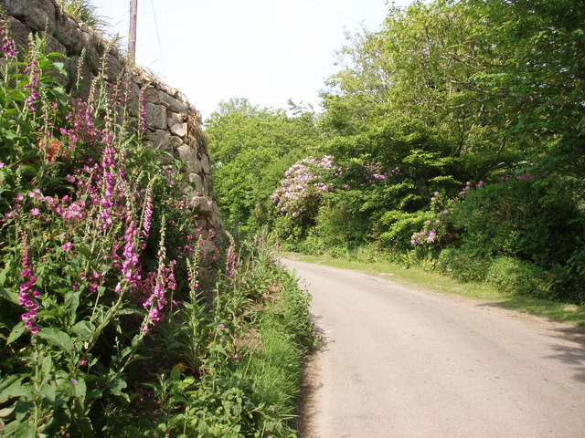 Lane at Ninnesbridge: St Michael's Way
