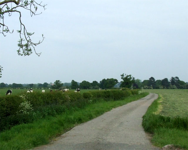 The lane to Coole Hall Farm