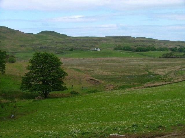 Pasture Field, Near Frachadil