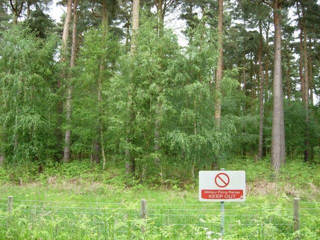 Fowlmere Wood