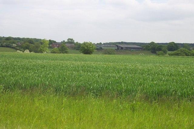 Duns Field Farm
