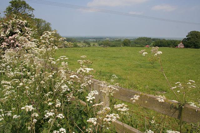 Acthorpe Medieval Village site