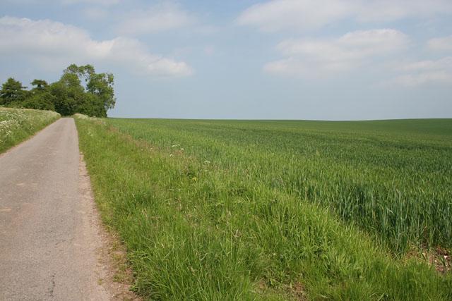 Farmland near Acthorpe Top