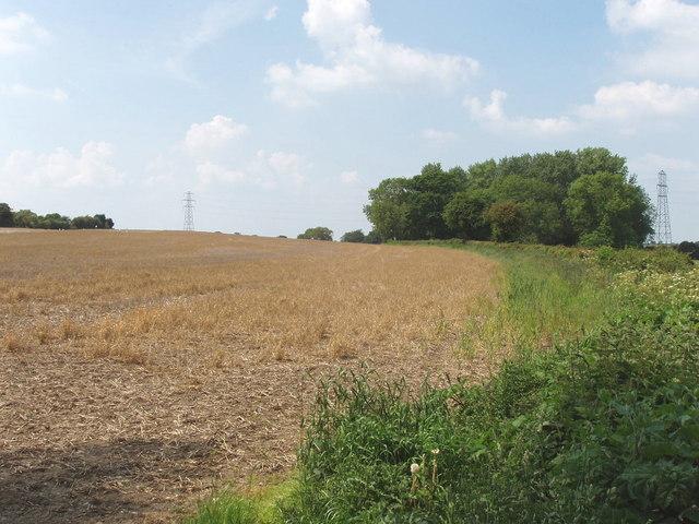 Stubble field, Peggs Farm, Haseley