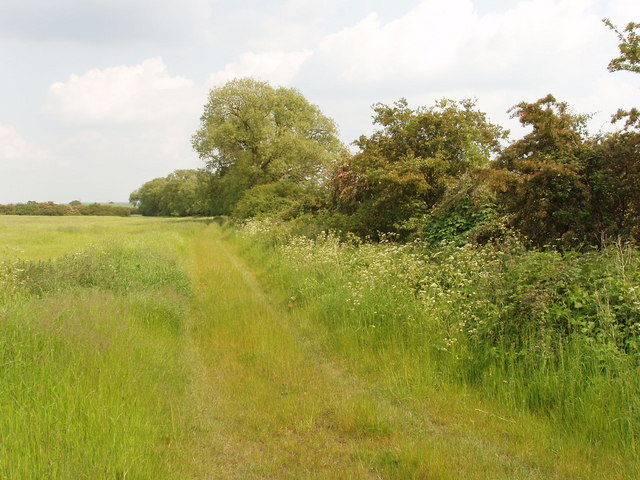 Bridleway by pasture, Latchford