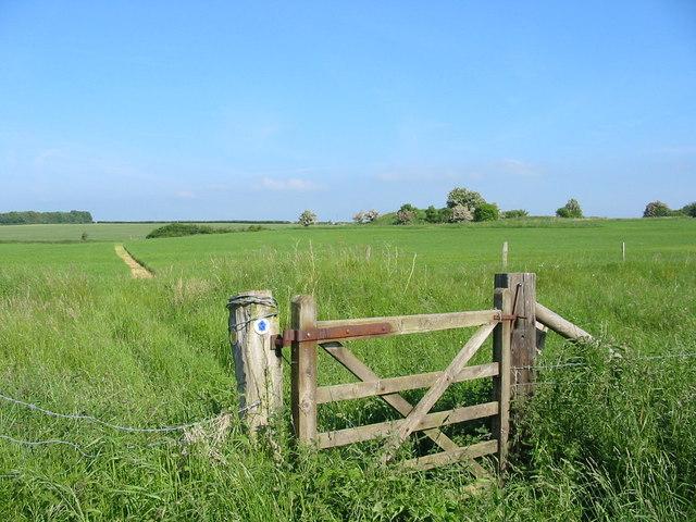 Bridle gate Pentridge Dorset