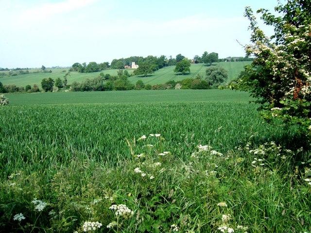 Fields near Battlesden
