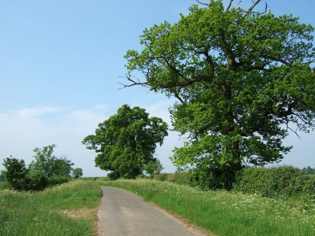 Lane to Battlesden