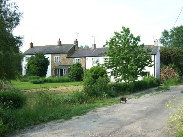 Terraced cottages, Northall - with cat