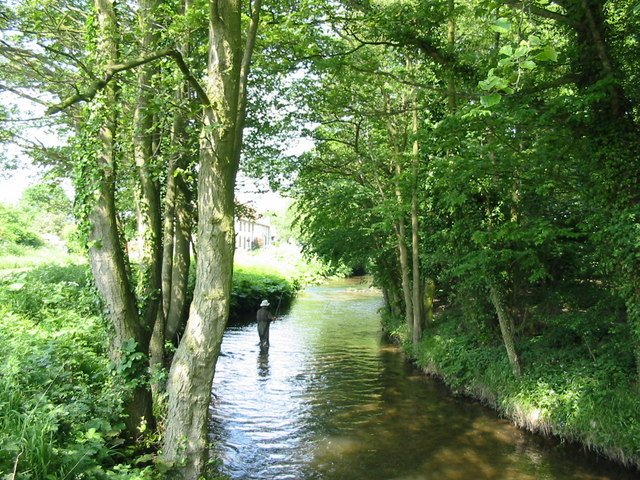 Fly Fishing in Pickering Beck