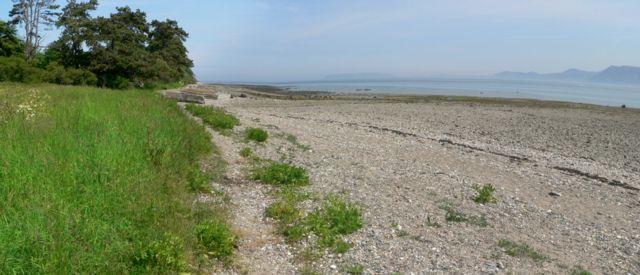 Friars Bay, Menai Straits, Beaumaris, Anglesey.