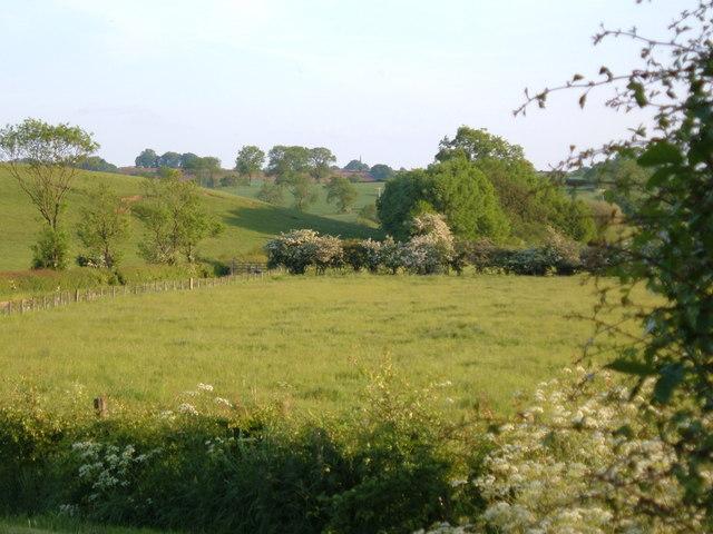 Farmland between Clipston and Naseby