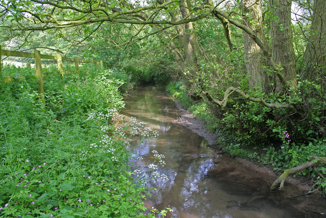 Brook at Little Welton