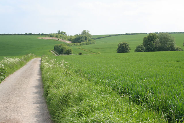 Farmland at Little Welton, near Louth