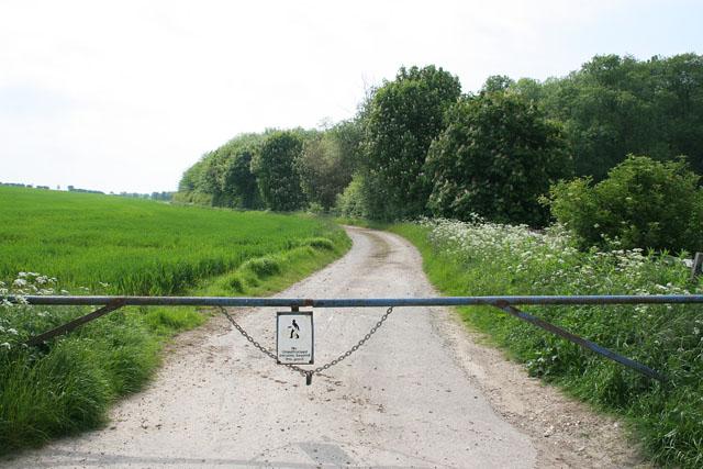 Allenby's Furze near Little Welton