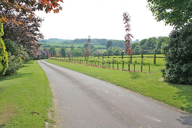 Driveway to Cottage Farm, Tathwell