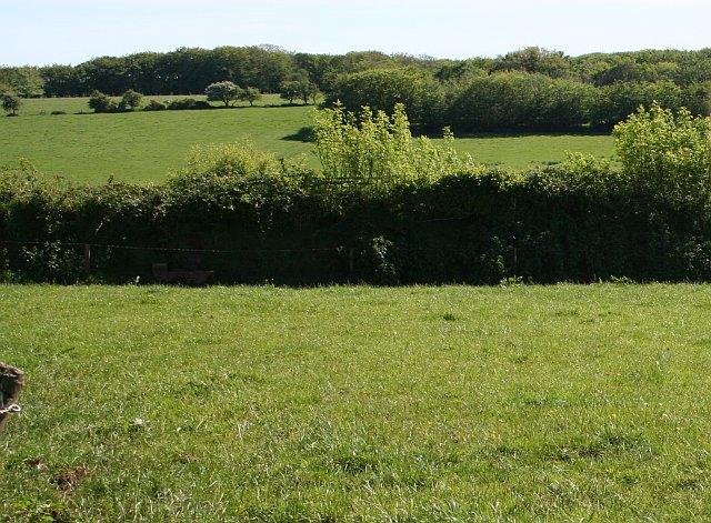 Green Fields below Brent Tor