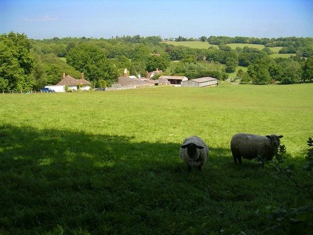 Little Boarzell Farm